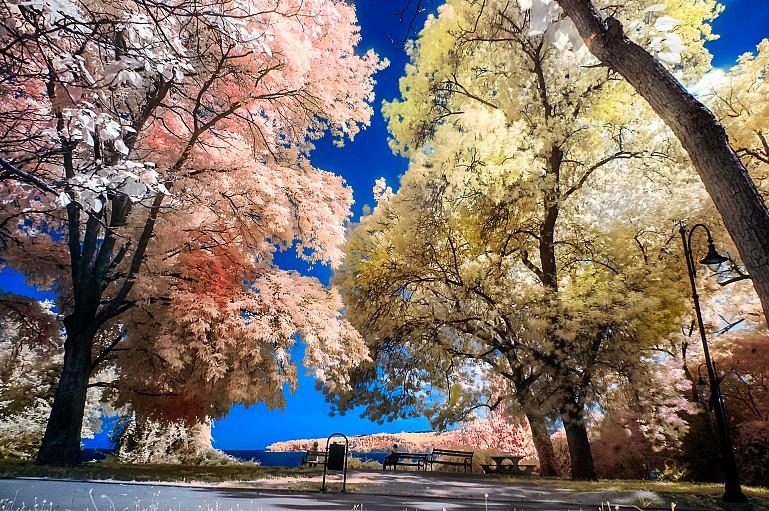 Инфракрасная фотография -720 nm